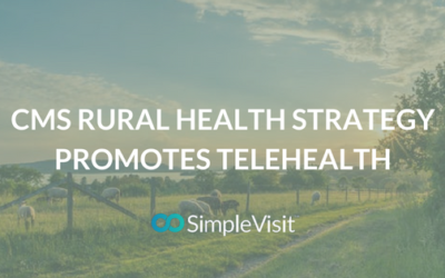 CMS Rural Health Strategy Promotes Telehealth